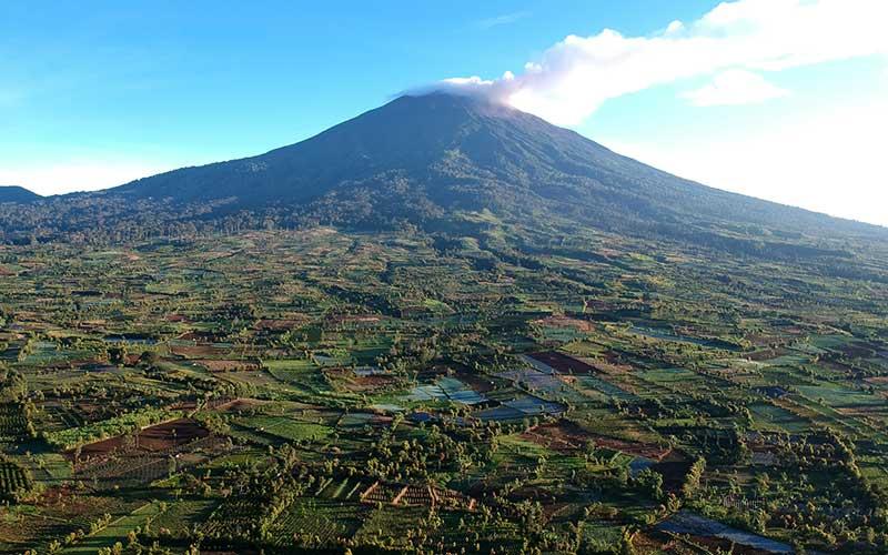 Panorama tutupan hutan Gunung Kerinci (3805 mdpl) yang sebagian kawasannya telah beralih fungsi menjadi perkebunan terlihat dari Kayu Aro, Kerinci, Jambi, Sabtu (1/8/2020).KLHK mengatakan Indonesia terus mengupayakan percepatan pemulihan hutan dan lahan agar deforestasi tidak melebihi laju rehabilitasi pada 2030. ANTARA FOTO/Wahdi Septiawan
