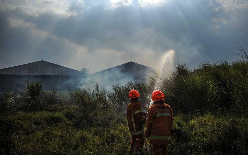Petugas pemadam kebakaran berusaha memadamkan api yang membakar lahan kering di Rancasari, Bandung, Jawa Barat, Senin (3/8/2020). Petugas menyatakan, kebakaran lahan kering yang berdekatan dengan permukiman warga tersebut diduga akibat cuaca panas dari musim kemarau yang sedang melanda Kota Bandung. ANTARA FOTO/Raisan Al Farisi