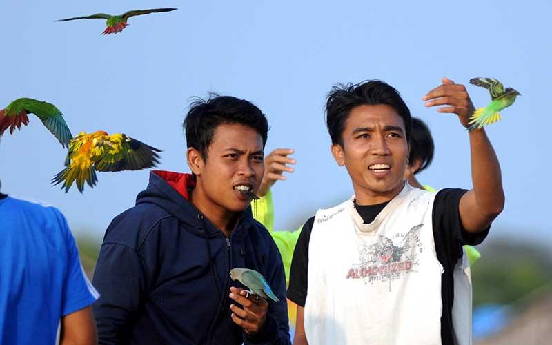 Pecinta burung paruh bengkok melatih terbang burungnya di areal tambak garam Desa Bunder, Pamekasan, Jawa Timur, Rabu (5/8/2020). Berbagai jenis burung berparuh bengkok tersebut dilatih terbang selama mungkin tanpa hinggap ke tempat lain dan kembali kepada pemiliknya. ANTARA FOTO/Saiful Bahri