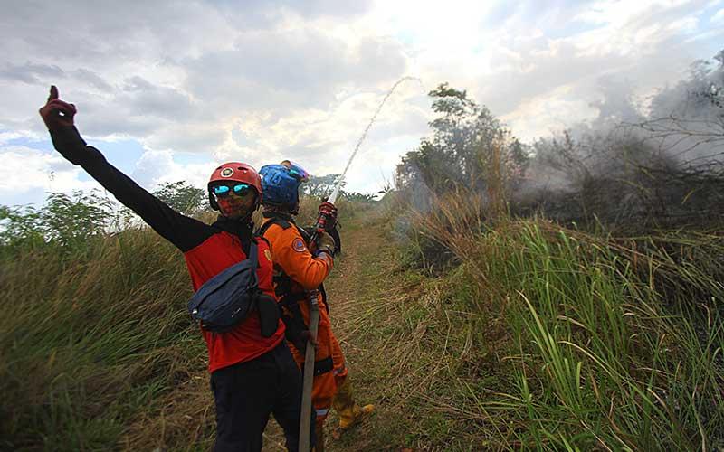 Petugas Badan Penanggulangan Bencana Daerah (BPBD) Kalimantan Selatan berupaya memadamkan api yang membakar semak belukar di Banjarbaru, Kalimantan Selatan, Jumat (18/9/2020). Kebakaran hutan dan lahan (karhutla) di Kalimantan Selatan mulai marak terjadi dalam beberapa hari belakangan ini akibat faktor cuaca panas serta angin kencang yang terjadi di sejumlah kabupaten dan kota. ANTARA FOTO/Bayu Pratama S