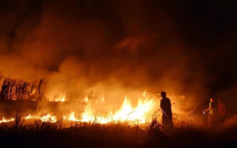 Sejumlah warga memadamkan api dengan peralatan seadanya saat terjadi kebakaran lahan tebu di atas areal aset milik Pemkot Madiun, Jawa Timur, Rabu (30/9/2020) malam. Kebakaran lahan tebu yang disewa sebuah pabrik gula di Madiun yang sebagian besar sudah dipanen tersebut diduga akibat sengaja dibakar oleh orang yang tidak bertanggung jawab. ANTARA FOTO/Siswowidodo
