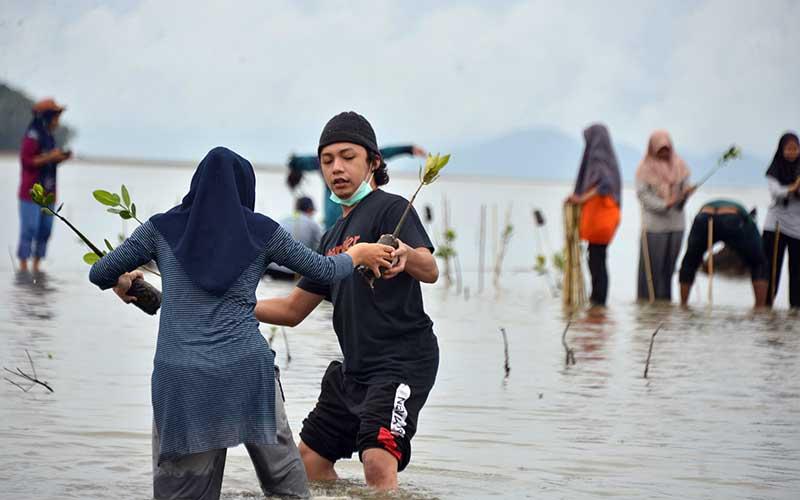 Warga membawa bibit mangrove untuk ditanam di kawasan pesisir Desa Lam Badeuk, Kecamatan Peukan Bada, Kabupaten Aceh Besar, Aceh, Sabtu (28/11/2020). Penanaman bibit manggrove di daerah pesisir itu merupakan program rehabilitasi ekosistem mangrove yang dicanangkan pemerintah dengan target 600.000 hektare dalam tahun 2020-2024. ANTARA FOTO/Ampelsa