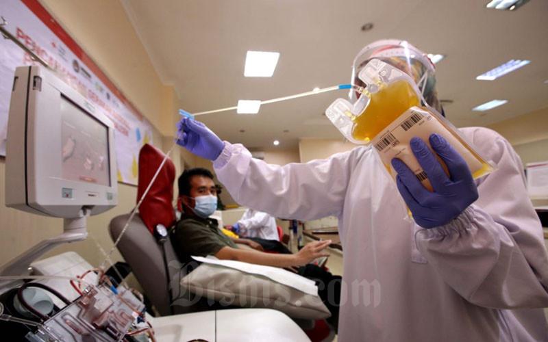 Petugas Palang Merah Indonesia (PMI) Kota Bandung melakukan proses pengambilan plasma darah dari penyintas Covid-19 yang menjadi pendonor di kantor PMI Kota Bandung, Jawa Barat, Selasa (19/1/2021). Saat ini minat penyintas Covid-19 mendonorkan plasma konvalesennya tergolong rendah. PMI Pusat mencatat jumlah calon pendonor plasma konvalesen hanya 5-10% dari total jumlah pasien yang sembuh secara nasional. Bisnis/Rachman