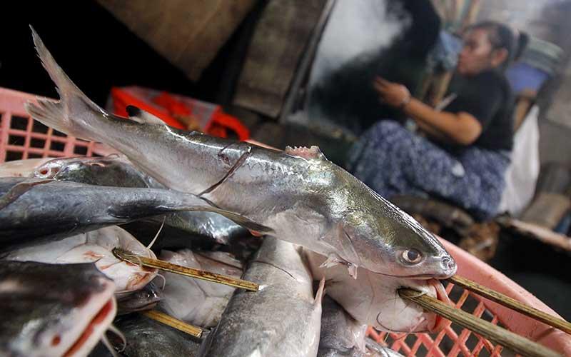 Pedagang membuat ikan asap di salah satu industri rumahan di Kampung Kejawan, Surabaya, Jawa Timur, Senin (25/1/2021). Menurut keterangan pedagang, harga ikan asap seperti ikan pari asap naik dari Rp35 ribu menjadi Rp40 ribu per kilogram dan ikan manyung asap naik dari Rp22 ribu menjadi Rp25 ribu per kilogram karena pasokan ikan dari nelayan menurun akibat cuaca buruk yang terjadi selama beberapa pekan terakhir. ANTARA FOTO/Moch Asim
