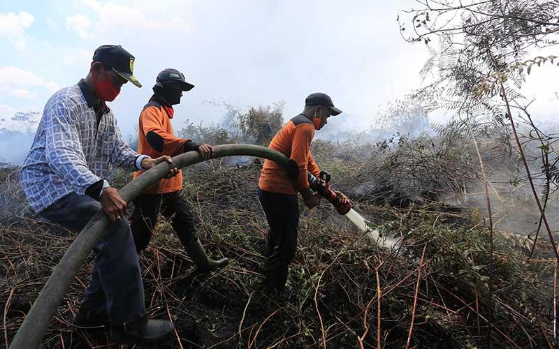 Petugas pemadam kebakaran melakukan proses pemadaman lahan gambut yang terbakar di kawasan perbatasan Kabupaten Aceh Barat dan Kabupaten Nagan Raya, Aceh, Minggu (28/2/2021). Data Badan Penanggulangan Bencana Aceh (BPBA) menyebutkan, kebakaran lahan gambut yang terjadi sejak Sabtu (27/2/2021) di Kabupaten Aceh Barat dan Kabupaten Nagan Raya telah menghanguskan 8 hektar lahan milik warga setempat. ANTARA FOTO/Syifa Yulinnas