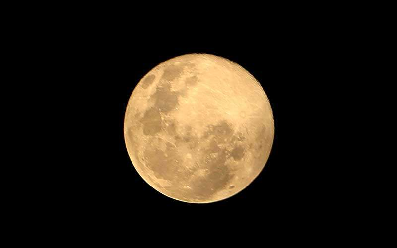 Bulan purnama salju atau super snow moon terlihat di Desa Alue Raya, Kecamatan Samatiga, Aceh Barat, Minggu (28/2/2021). Menurut Pusat Edukasi Sains Antariksa LAPAN, secara tradisional, bulan purnama di bulan Februari 2021 disebut juga Bulan Purnama Salju (Bulan Salju Penuh) karena di belahan utara Bumi, hujan salju turun di sisa musim dingin. ANTARA FOTO/Syifa Yulinnas