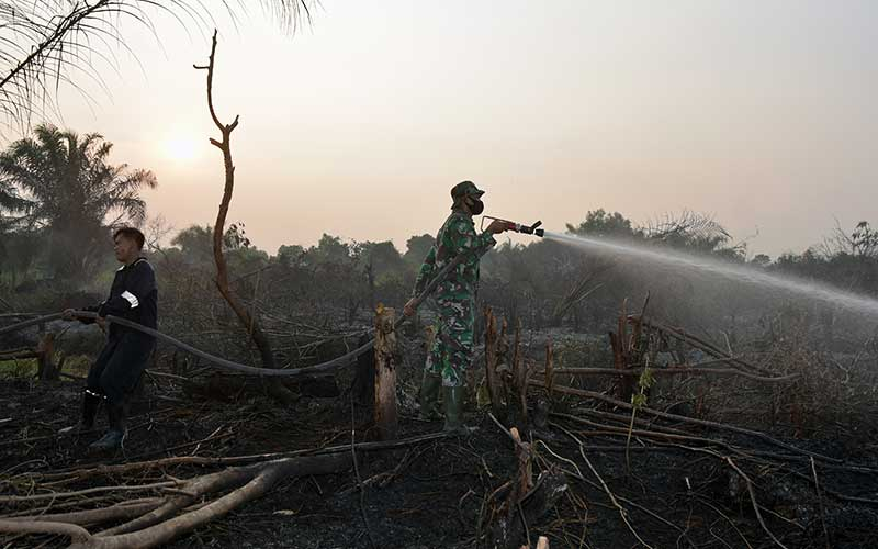 Sejumlah personel Babinsa dan Badan Penanggulangan Bencana Daerah (BPBD) Pekanbaru memadamkan kebakaran lahan gambut di Kecamatan Rumbai, Kota Pekanbaru, Riau, Senin (1/3/2021). Pemerintah Provinsi Riau menetapkan status Siaga Darurat Kebakaran Hutan dan Lahan (Karhutla) sejak 15 Februari hingga 31 Oktober 2021, untuk mengantisipasi musim kemarau panjang pada tahun ini agar tidak terulang bencana asap akibat Karhutla. ANTARA FOTO/FB Anggoro