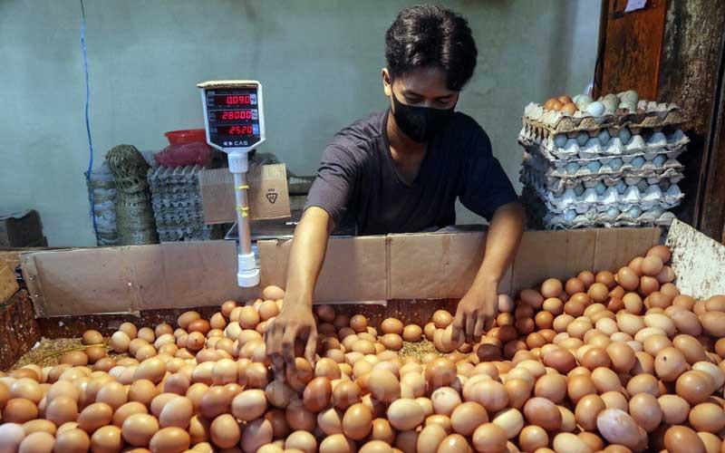 Pedagang memperlihatkan telur ayam di salah satu pasar di Jakarta, Selasa (20/4/2021). Menurut pedagang harga telur ayam mengalami kenaikan pada awal bulan ramadan kali ini, dari sebelumnya Rp 21.000/kg menjadi Rp 25.000/kg.Bisnis/Eusebio Chrysnamurti