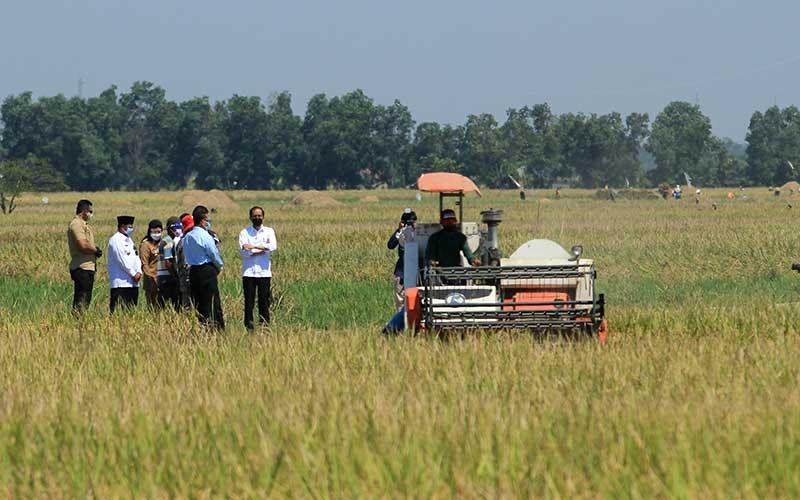 Presiden Joko Widodo (tengah) berbincang dengan petani saat menghadiri panen raya padi di desa Wanasari, Bangodua, Indramayu, Jawa Barat, Rabu (21/4/2021). Selain menghadiri panen raya, Presiden Jokowi juga berdialog untuk menerima keluhan para petani. ANTARA FOTO/Dedhez Anggara