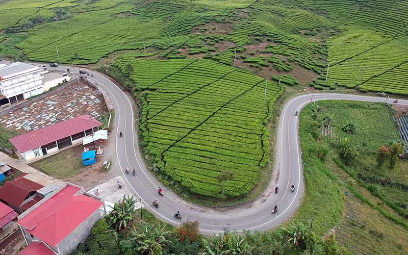 Kendaraan melintas di Jalan Lintas Jambi-Sumbar, Kerinci, Jambi, Selasa (11/5/2021). Lalu lintas kendaraan pribadi maupun barang di jalan penghubung Provinsi Jambi dengan Sumatera Barat tersebut terpantau normal. ANTARA FOTO/Wahdi Septiawan
