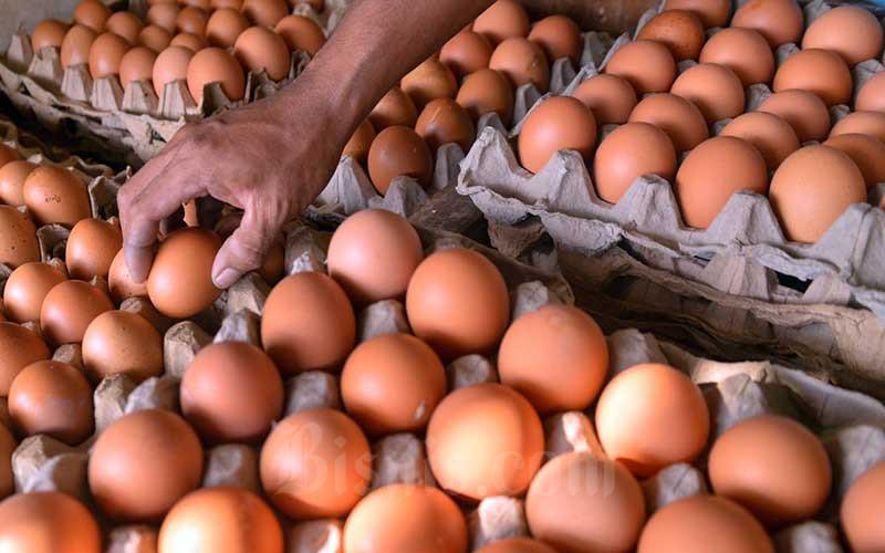 Pedagang menata telur di Pasar Minggu, Jakarta, Kamis (10/6/2021). Pemerintah berencana mengenakanPajak Pertambahan Nilai (PPN) sebesar 12 persen untuk bahan pokok atau sembako. Pengenaan PPN sembako tertuang dalam revisi Undang-Undang Nomor 6 tahun 1983 tentang Ketentuan Umum dan Tata Cara Perpajakan (KUP). Bisnis/Fanny Kusumawardhani