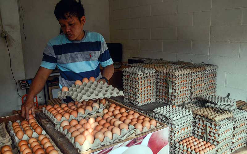 Pedagang menata telur di Pasar Minggu, Jakarta, Kamis (10/6/2021). Pemerintah berencana mengenakan Pajak Pertambahan Nilai (PPN) sebesar 12 persen untuk bahan pokok atau sembako. Pengenaan PPN sembako tertuang dalam revisi Undang-Undang Nomor 6 tahun 1983 tentang Ketentuan Umum dan Tata Cara Perpajakan (KUP). Bisnis/Fanny Kusumawardhani