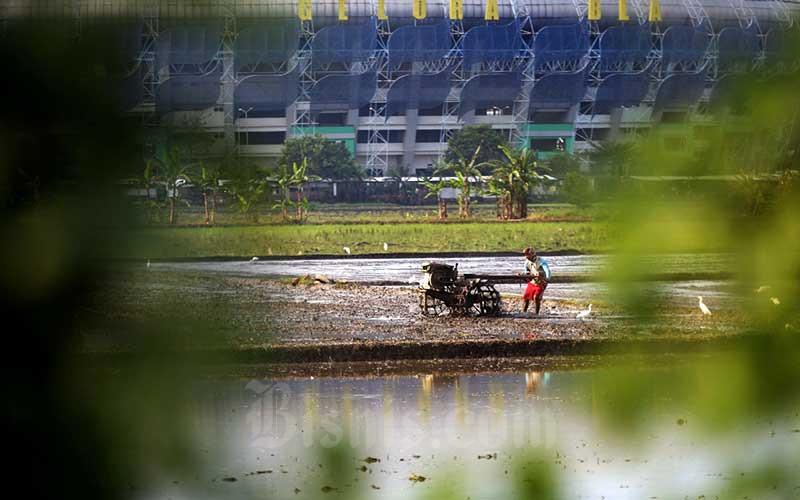 Petani membajak sawah menggunakan traktor di lahan sawah garapannya di dekat Stadion Gelora Bandung Lautan Api (GBLA) Gedebage, Bandung, Jawa Barat, Kamis (10/6/2021). Untuk mengamankan produksi pangan, Kementerian Pertanian melaksanakan mitigasi untuk mengantisipasi musim kering. Salah satu langkah strategis yang dilakukan adalah menginventarisasi daerah rawan kekeringan dan pengawalan, serta memonitor pertanaman pada daerah potensi kekeringan. Bisnis/Rachman