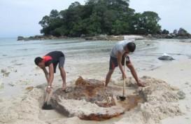 Pemerintah Diminta Gelar Karpet Merah Bagi Investor Pulau-pulau Kecil