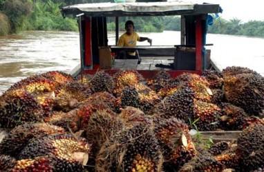Belitung Timur Punya Pembangkit Listrik Biogas