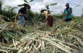 Konflik Agraria: Warga Cinta Manis, Sumsel Siap Verifikasi Lahan