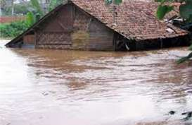 Dampak Banjir, 60.000 Ha Sawah di Indramayu Rusak Parah