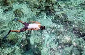 Kunjungan Turis Asing ke Sulawesi Utara Turun