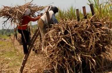 Mendorong Industri Hilir Berbasis Produk Pertanian