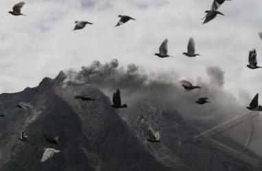 Erupsi Gunung Sinabung: Korban Tewas Jadi 17 Orang