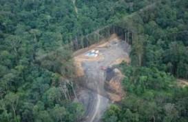 Petunjuk Teknis Pinjam Pakai Kawasan Hutan Lindung Diterbitkan