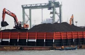PTPP akan Bangun Terminal Batubara di Kutai Rp2 Triliun