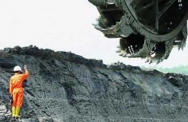 PTPP Berhasil Raih Kontrak Terminal Batubara, Ini Nilai Kesepakatannya