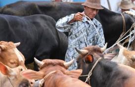 Jabar Pacu Produksi Daging Lewat Kawin Alam