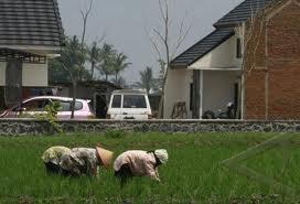 Kementan & TNI-AD Cetak Sawah Baru