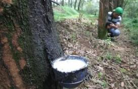 Ekspor Sumut, Diproyeksi Membaik pada Semester II