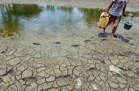Hati-hati! El Nino Diprediksi Mengancam pada Mei-Juli