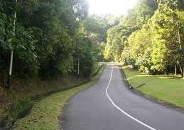 Sumsel Bangun Kebun Raya di Indralaya Rp394 Miliar