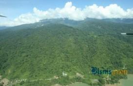 Apkasi Tuntut Wewenang Izin Pakai Kawasan Hutan Dilimpahkan ke Daerah