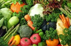 Pekanbaru Penuhi 85% Sayur & Buah Sendiri