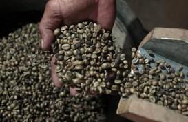 Harga Kopi Robusta Rebound 0,38% di Awal Perdagangan