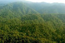 Keanekaragaman Hayati Indonesia Banyak Tergerus