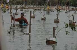 Greenpeace: Ini Tantangan Lingkungan Hidup Untuk Capres 2014