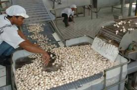 Pemkab Bandung Pacu Produksi Jamur