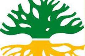 Koalisi Masyarakat Sipil Kalbar Peringati Hari Lingkungan…