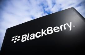 Blackberry dan BBM Masih Jadi Favorit Pemilik Smartphone di Indonesia