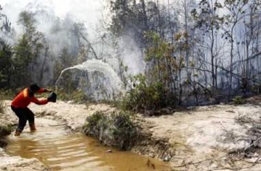 KOMDA REDD+: 15 Desa Dilatih Hadapi Ancaman Kebakaran Hutan dan Lahan