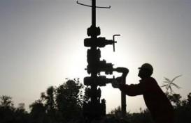 Pemerintah Tawarkan Wilayah Kerja Shale Gas