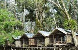Kampung Tengkawang: Sinergikan Ritual Adat Dalam Menjaga Hutan