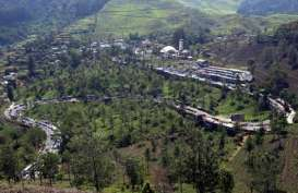 ARUS BALIK LEBARAN 2014: Jalur Puncak-Cianjur Ramai Lancar
