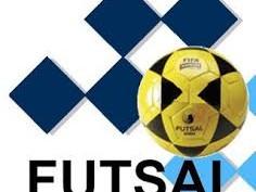 PELUANG USAHA: Bisnis Lapangan Futsal Kian Nendang