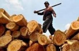 KAYU BULAT: Perajin Tolak Pembukaan Kembali Ekspor Log