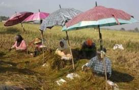 Jokowi Kasih Uang Saku Kepada Petani