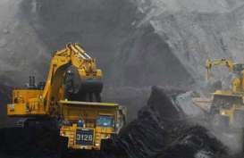 BORNEO LUMBUNG (BORN) Targetkan Produksi Batu Bara 1,8 Juta Ton