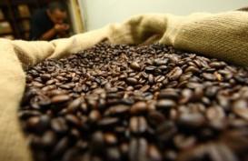 HARGA KOPI ROBUSTA (22 September 2014): Awal Perdagangan Melemah 0,21%