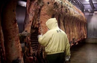 Impor Daging Wagyu: Kementan Tunggu Sertifikat Halal